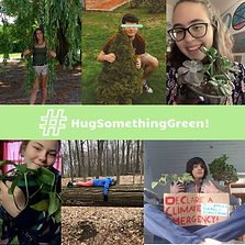 #HugSomethingGreen Collage (1).png