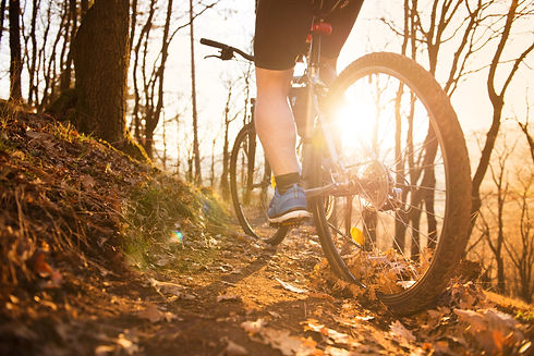 mountain-biker-PWXS8LX.jpg