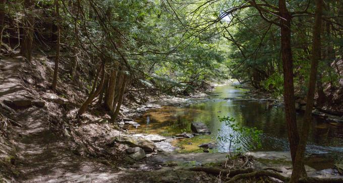 Christman Trail