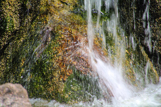 Falls at Morikami
