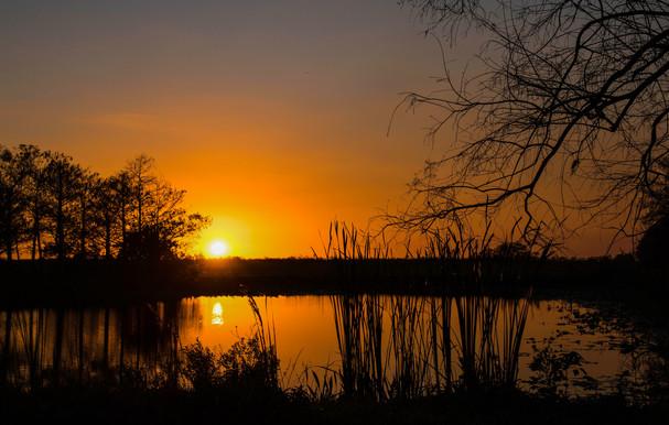 Sunset at Loxahatchee