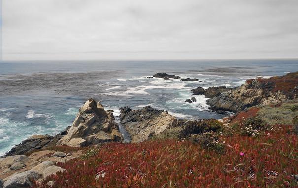 Pacific Coast Rt 1a