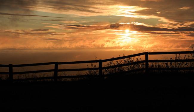 Sunrise with Fence