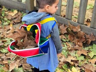 Anem a buscar fulles de la tardor