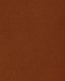 Cotton Velvet - Terracotta.jpg