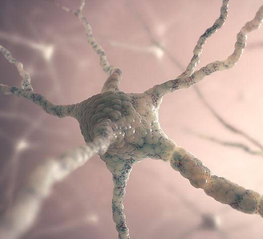 neurons-P4R6UXK.jpg