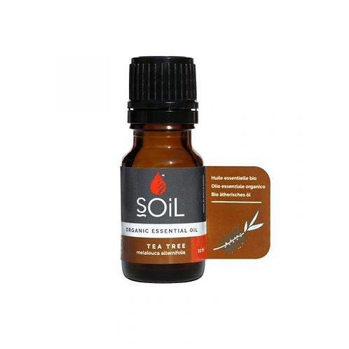 Organic Tea Tree Essential Oil 10ml - Soil