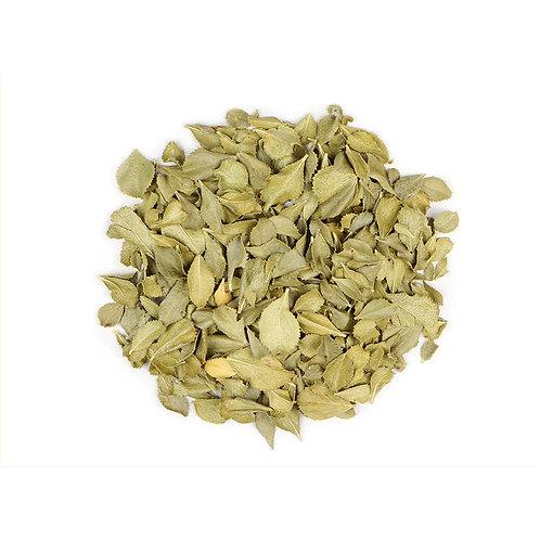 Buchu Tea - Namo Health