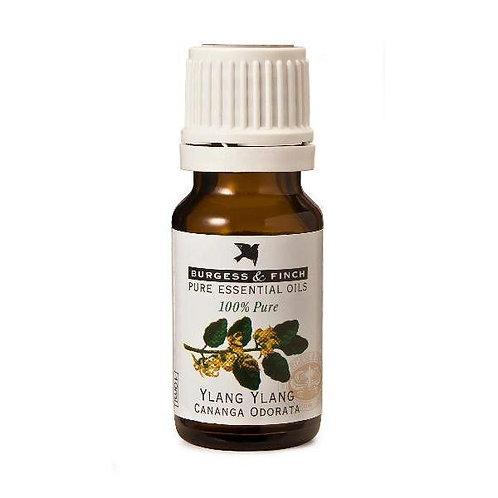Ylang Ylang Essential Oil 10ml - Burgess & Finch