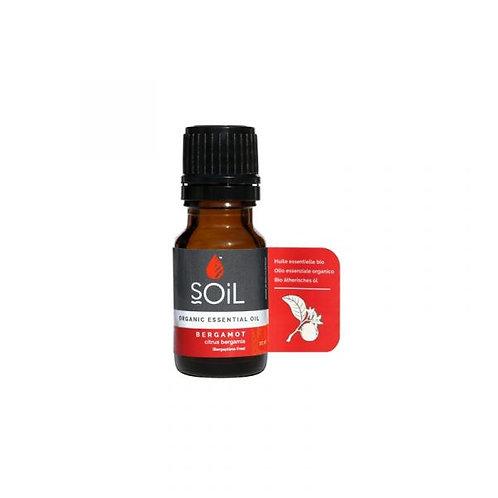 Bergamot Essential Oil 10ml - Soil
