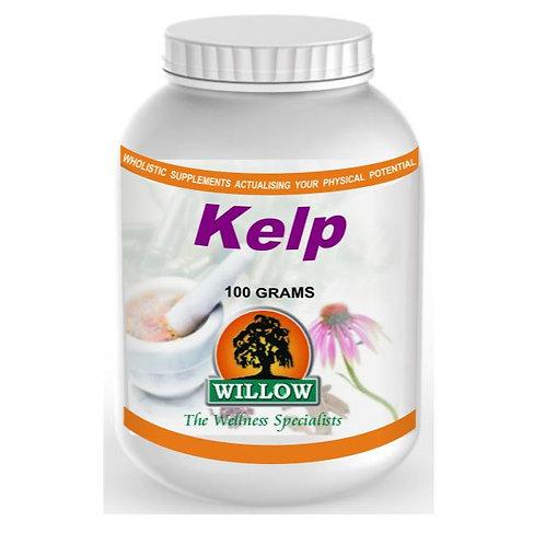 Kelp Powder - Willow