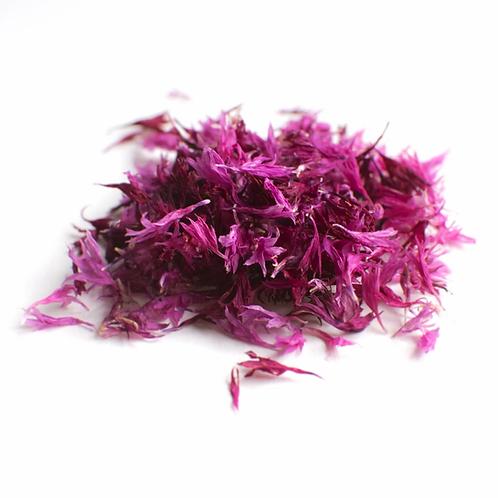 Pink Cornflowers - Namo Health