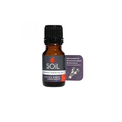Organic Juniper Berry Essential Oil - Soil