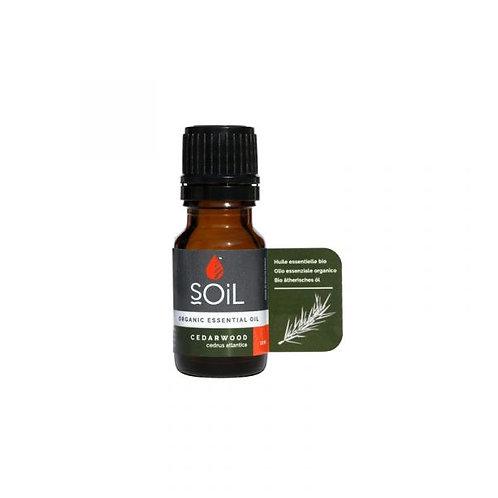 Organic Cedarwood Essential Oil 10ml - Soil