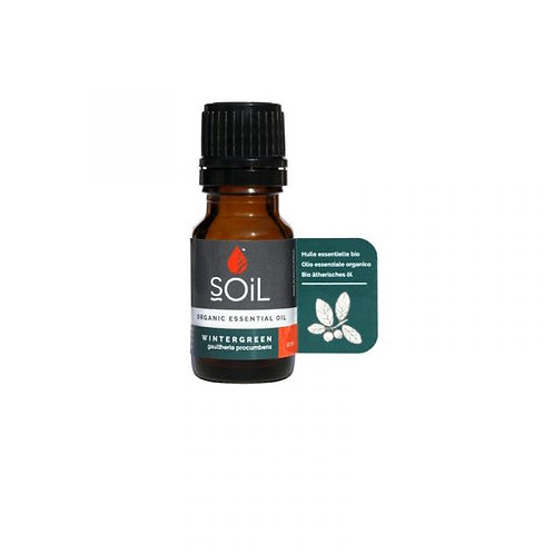 Organic Wintergreen Essential Oil 10ml - Soil