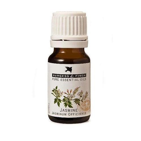 Jasmine Essential Oil 10ml - Burgess & Finch