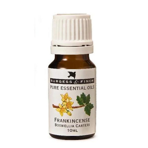 Frankincense Essential Oil 10ml - Burgess & Finch