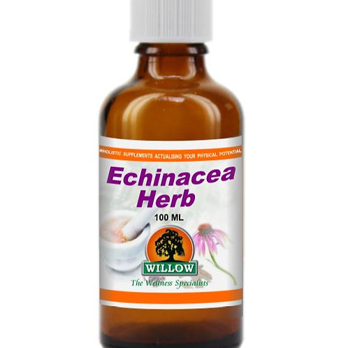 Organic Echinacea Herb Tincture - Willow
