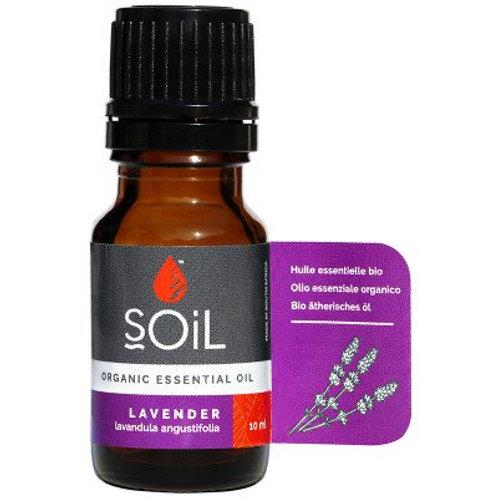Lavender Essential Oil - Soil