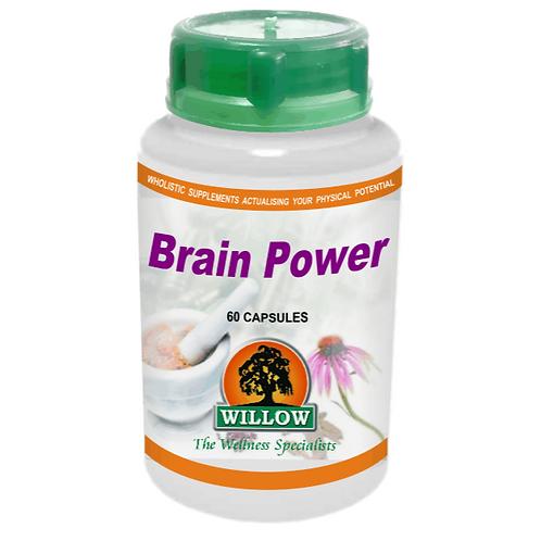 Brain Power Capsules - Willow