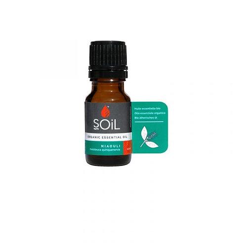 Organic Niaouli Essential Oil - Soil