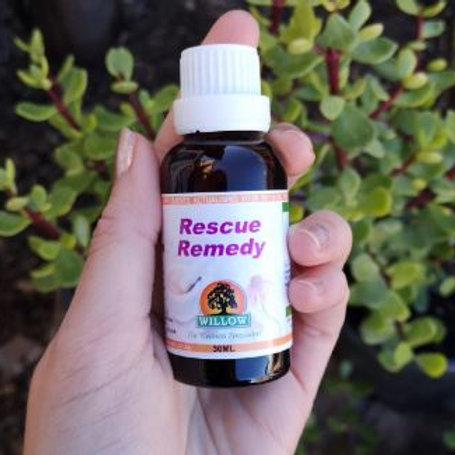 Rescue Remedy Drops - Willow