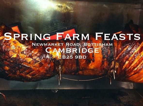 Farm feast logo.jpeg