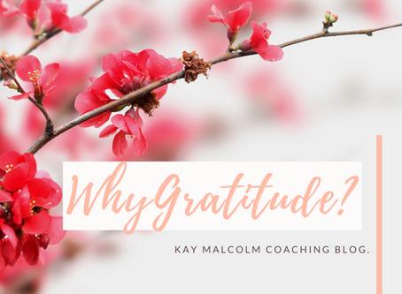Why Gratitude?
