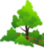 Tree-Fence.png