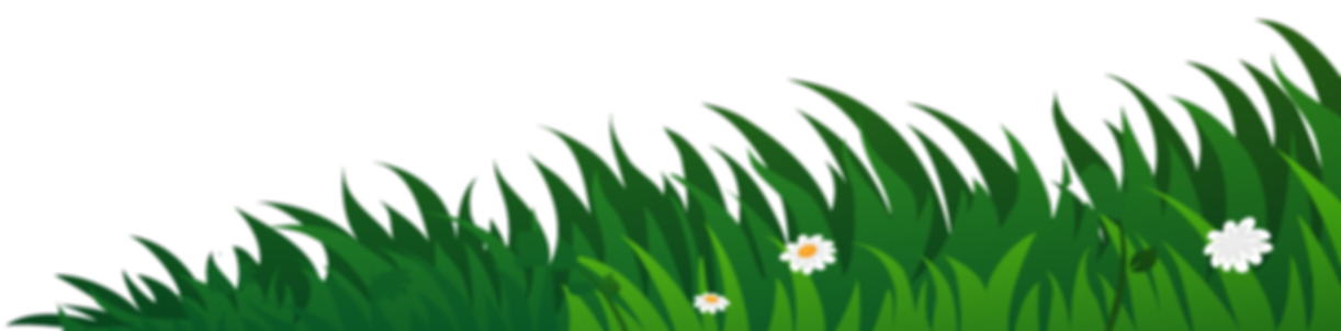 Grass-RHT.png