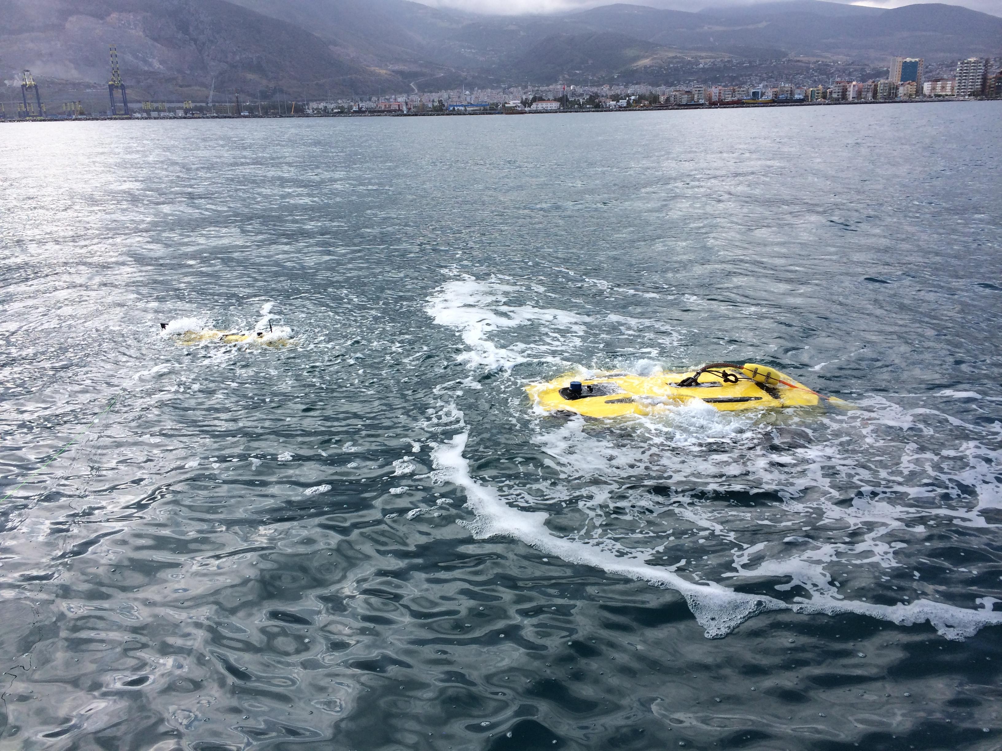 TR-100 AUV and TR-1000 ROV