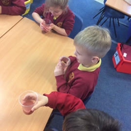 Using senses to guess which fruits were in a smoothie