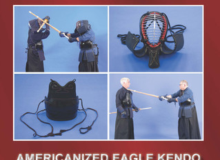 NEW BOOK: KENDO FOR FUN