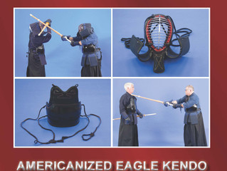 NEW BOOK: KENDO FOR FUN
