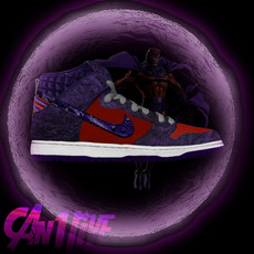 magneto-dunk-high.jpg
