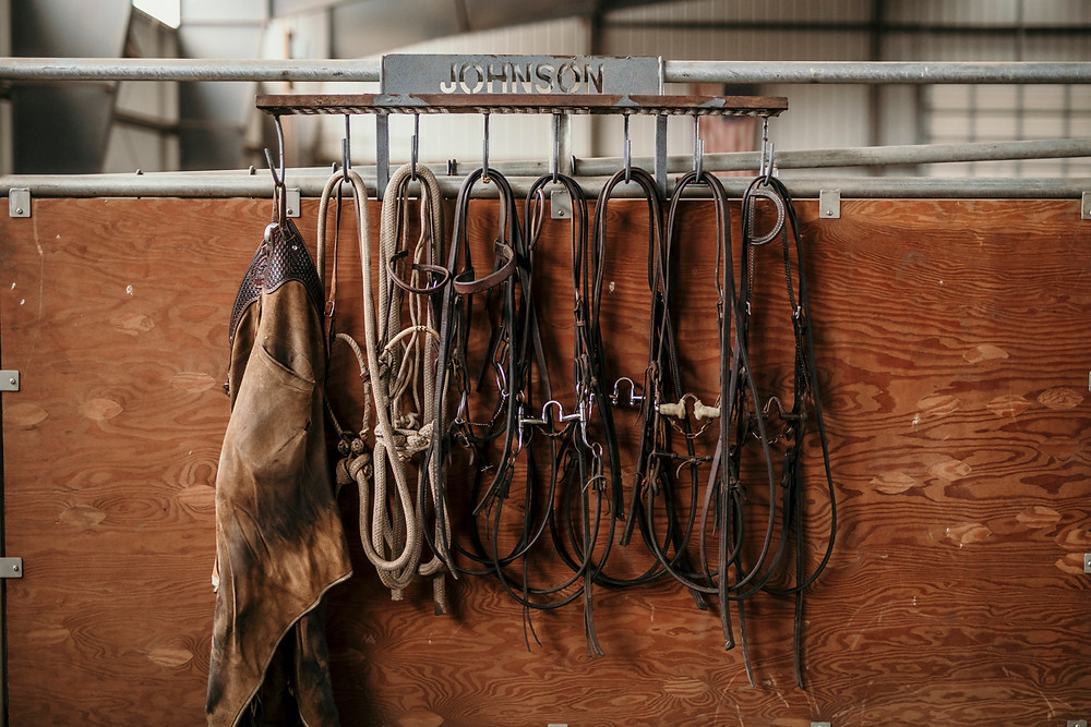 cutting horse bits and bridles
