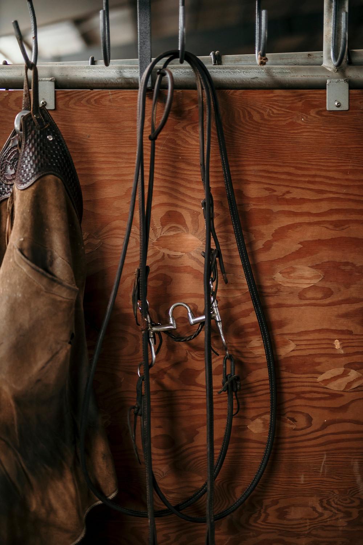cutting horse correctional bit, correction bit, cutting horse training equipment
