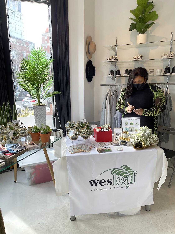 Pop-Up Plant Boutique