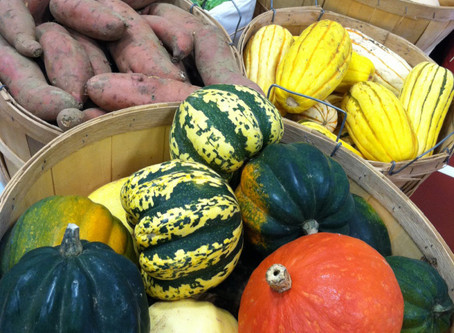 October 2nd Canterbury Farmers Market News