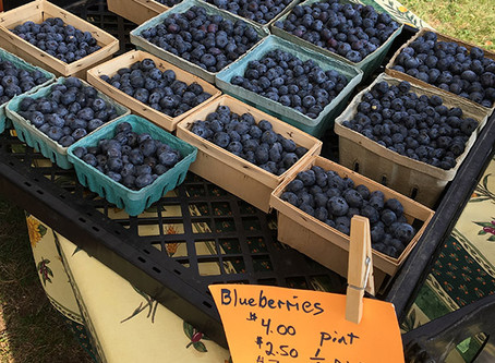 Blues and Blueberries - Market News for July 24th