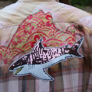 MV/Shark
