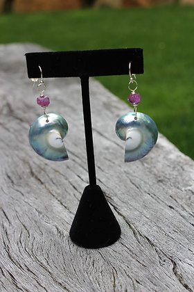 Pink Sapphire and Blue Nautilus Shell