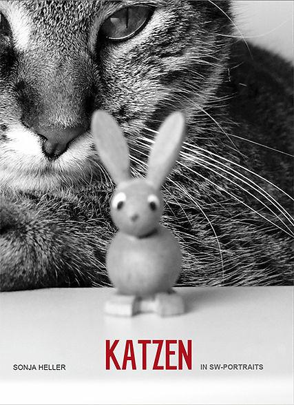 Katzen Titel.jpg