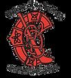 Camogie-Logo-1.png