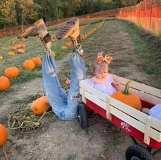 Chandler Pumpkin Farm