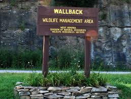 Wallback Wildlife Management Area
