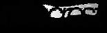 nitecrest-logo.png