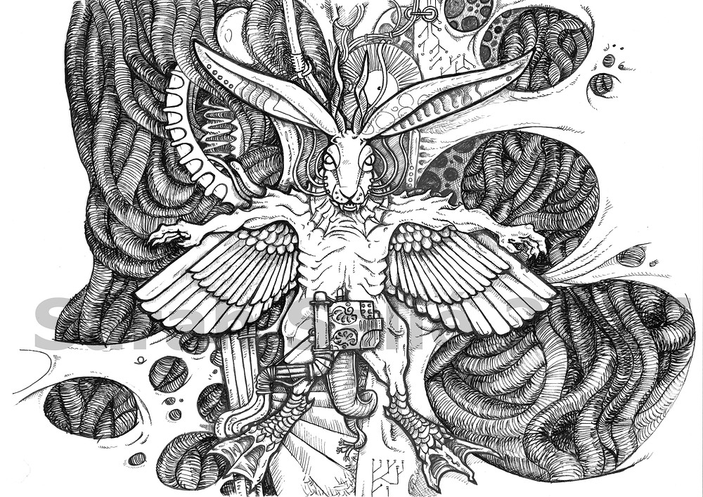 Jackaroo_Album_Sketch