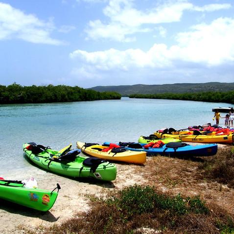 Playa Jungla