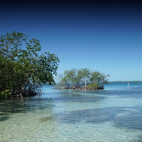 Isla de Guilligan